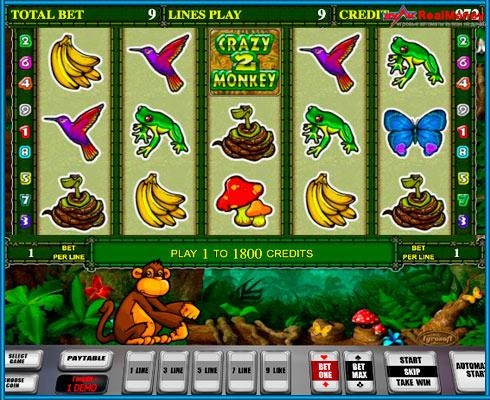 Игровое поле автомата Crazy Monkey 2 на деньги