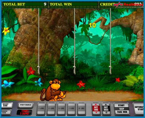 Первый раунд бонусной игры Crazy Monkey 2
